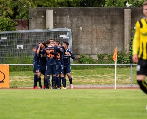 1:0 gegen Plauen - Arbeitssieg durch geschlossene Mannschaftsleistung
