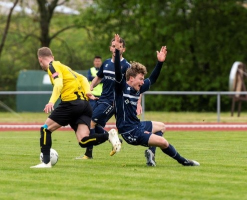 INTER vs. VFC Plauen
